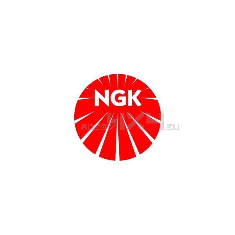 Adesivo NGK logo