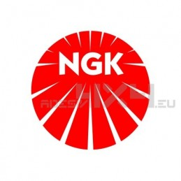 Adesivo NGK logo XL