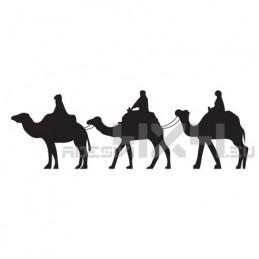 Adesivo cammelli